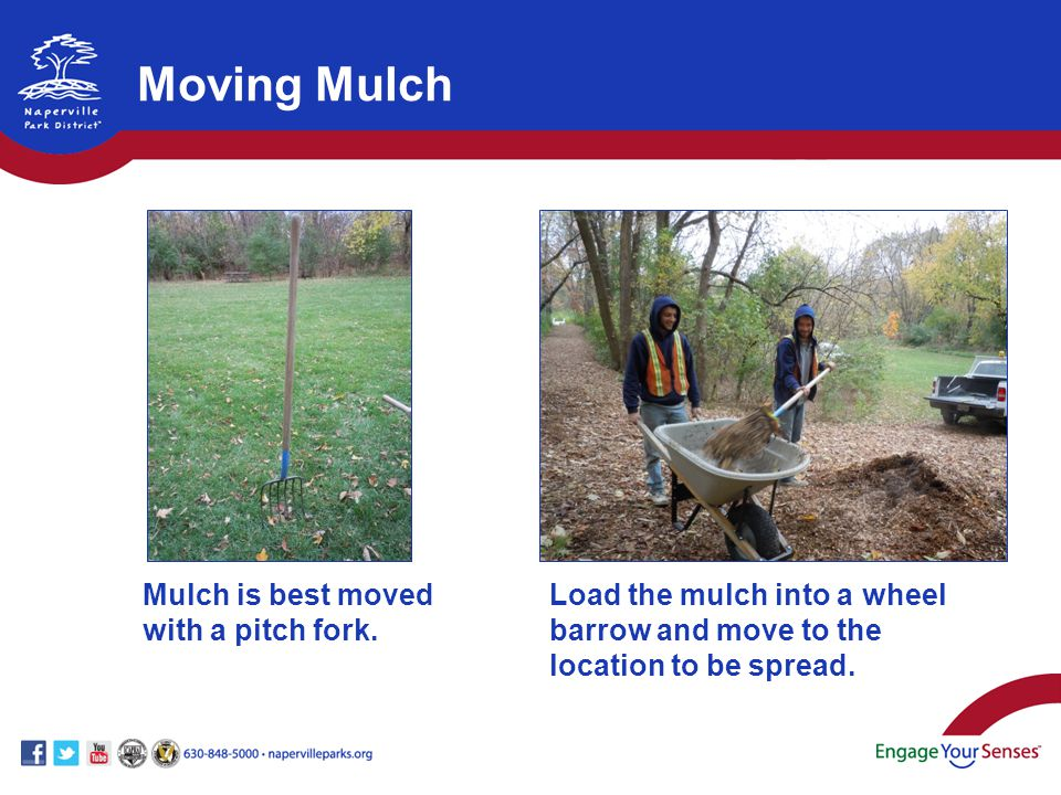 Mulch is best moved with a pitch fork.