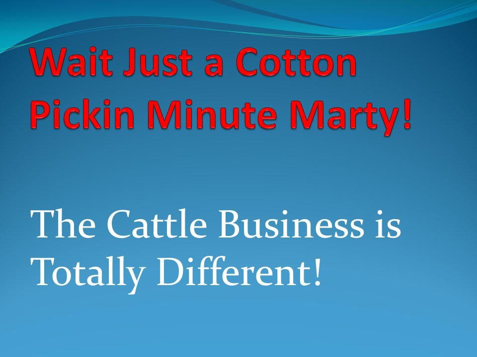 The Cattle Business is Totally Different!