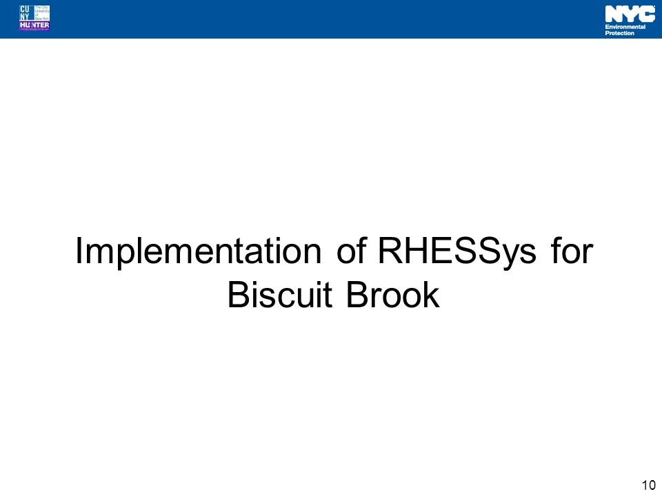 Implementation of RHESSys for Biscuit Brook 10