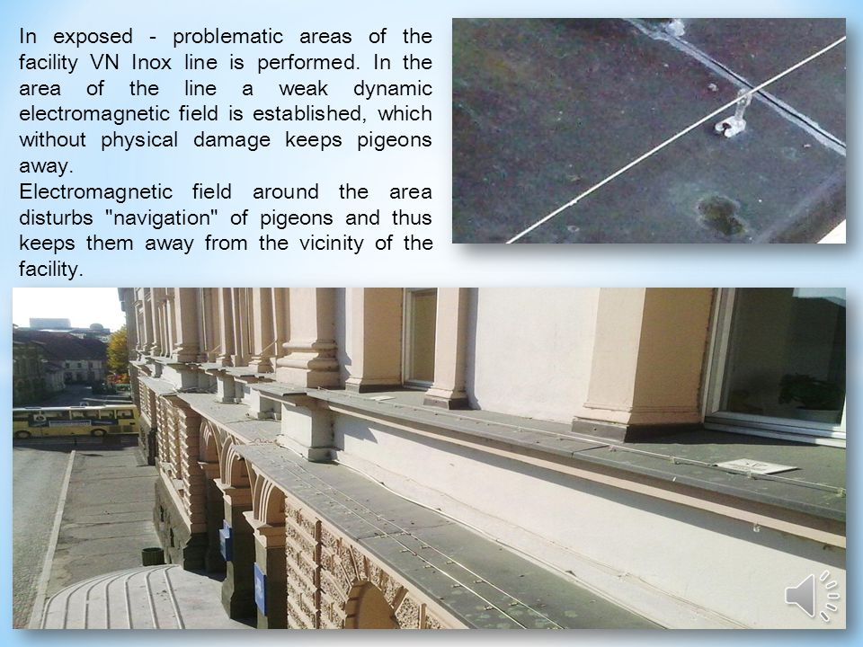 Electronic system for the pigeons distancing is an exclusive system and environment and nature friendly. It works without additives chemicals and toxi