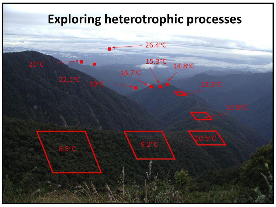 8.5 o C 9.2 o C 10.5 o C 11.9 o C 13.3 o C 15.3 o C 14.8 o C 16.7 o C Exploring heterotrophic processes 19 o C 21 o C 22.1 o C 26.4 o C