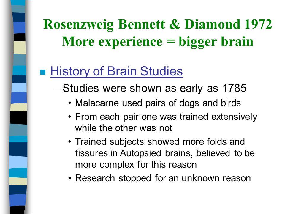 Rosenzweig Bennett & Diamond 1972 More experience = bigger brain n History of Brain Studies –Studies were shown as early as 1785 Malacarne used pairs