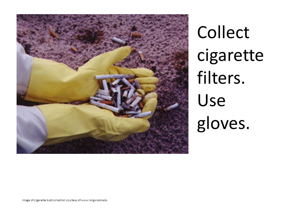 Collect cigarette filters. Use gloves.