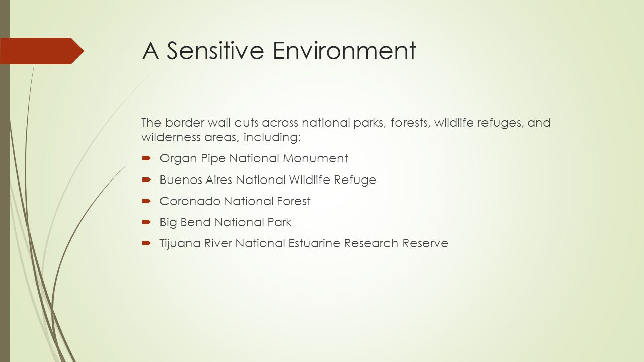 A Sensitive Environment The border wall cuts across national parks, forests, wildlife refuges, and wilderness areas, including:  Organ Pipe National Monument  Buenos Aires National Wildlife Refuge  Coronado National Forest  Big Bend National Park  Tijuana River National Estuarine Research Reserve