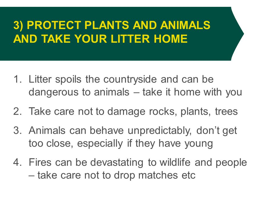 1.Litter spoils the countryside and can be dangerous to animals – take it home with you 2.Take care not to damage rocks, plants, trees 3.Animals can behave unpredictably, don't get too close, especially if they have young 4.Fires can be devastating to wildlife and people – take care not to drop matches etc