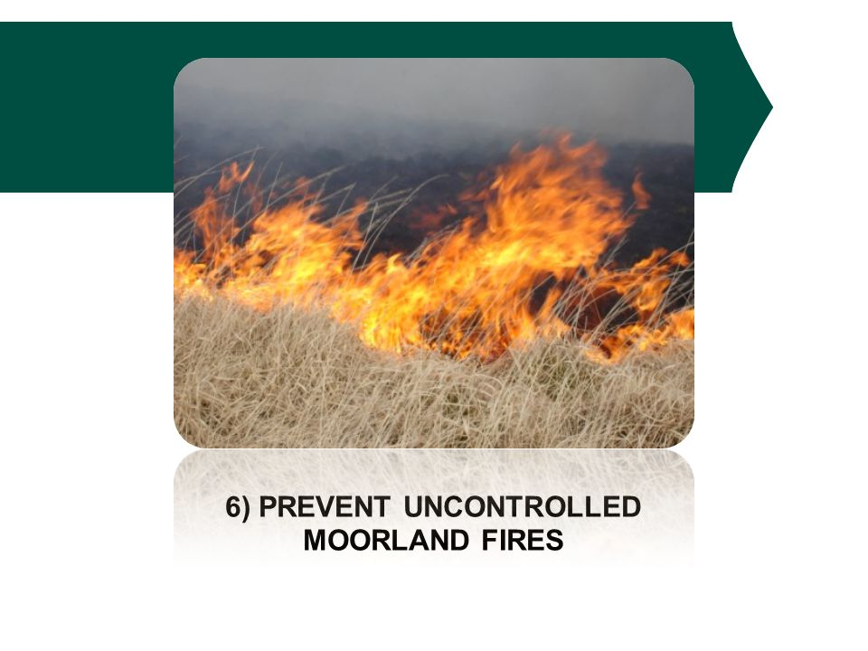 6) PREVENT UNCONTROLLED MOORLAND FIRES