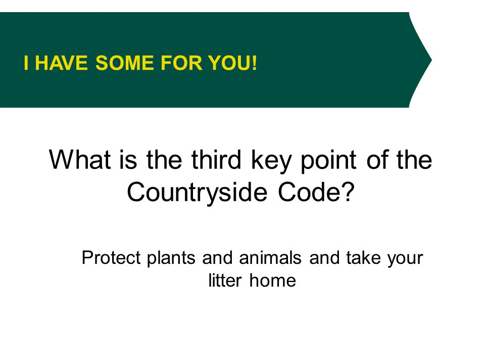 I HAVE SOME FOR YOU. What is the third key point of the Countryside Code.