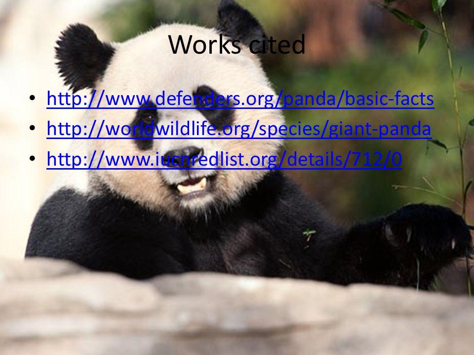 Works cited http://www.defenders.org/panda/basic-facts http://worldwildlife.org/species/giant-panda http://www.iucnredlist.org/details/712/0