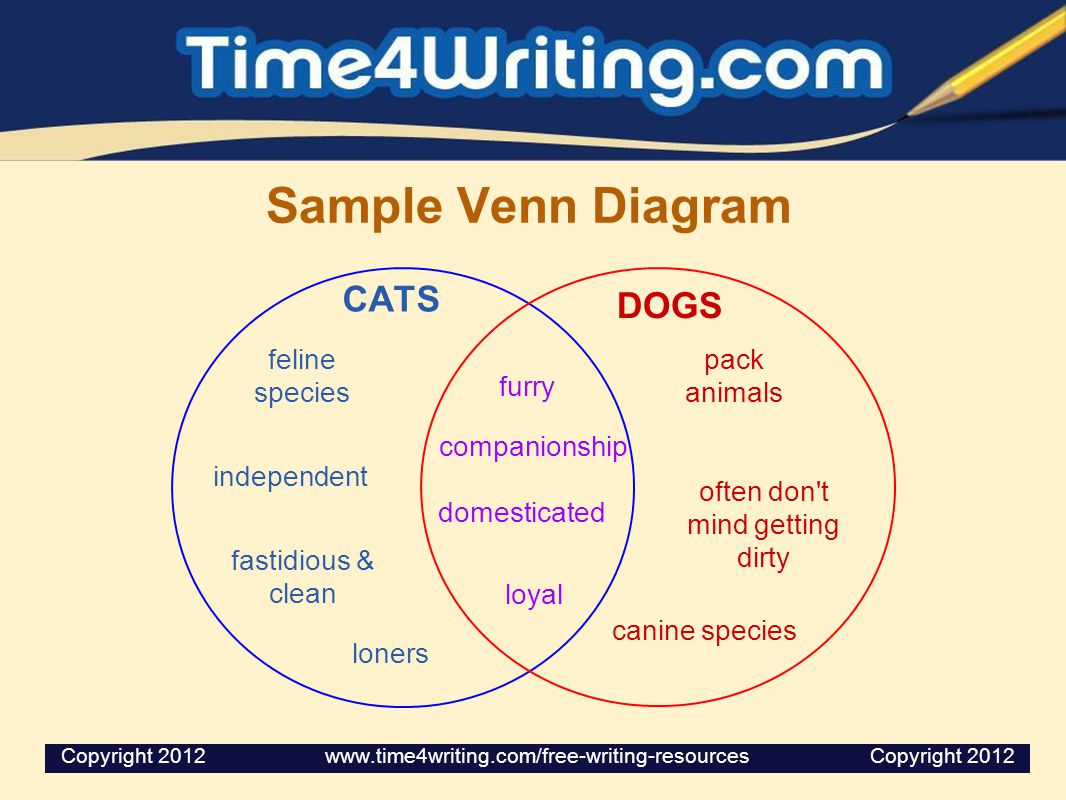 Sample Venn Diagram CATS DOGS loyal furry feline species independent canine species loners pack animals companionship domesticated often don't mind ge