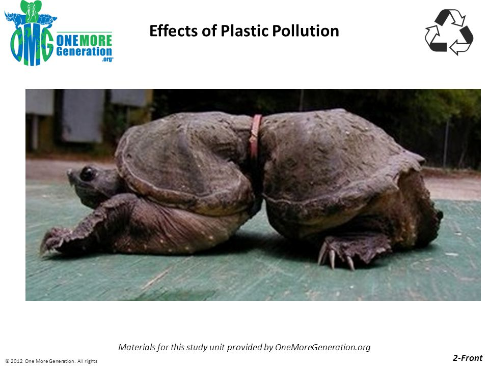 Effects of Plastic Pollution Materials for this study unit provided by OneMoreGeneration.org 2-Front © 2012 One More Generation.