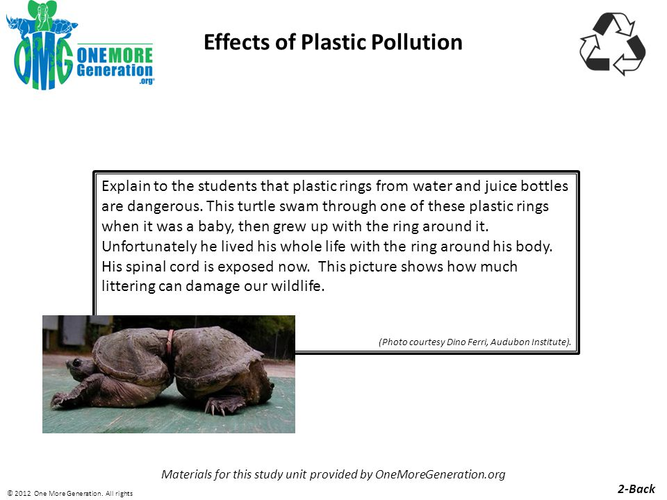 Effects of Plastic Pollution Materials for this study unit provided by OneMoreGeneration.org 3-Front © 2012 One More Generation.