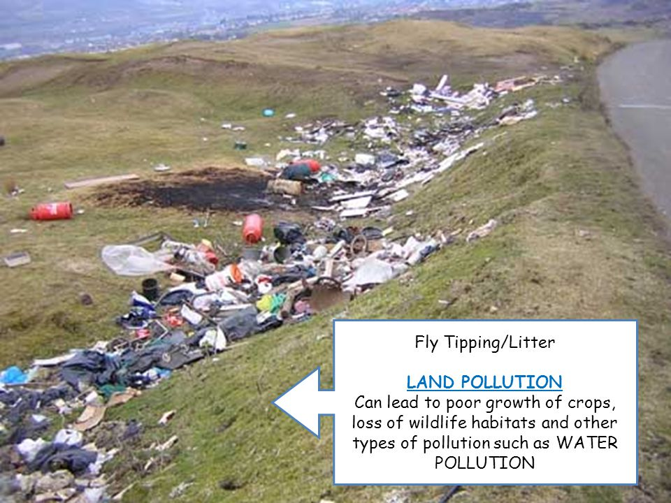 Fly Tipping/Litter LAND POLLUTION Can lead to poor growth of crops, loss of wildlife habitats and other types of pollution such as WATER POLLUTION