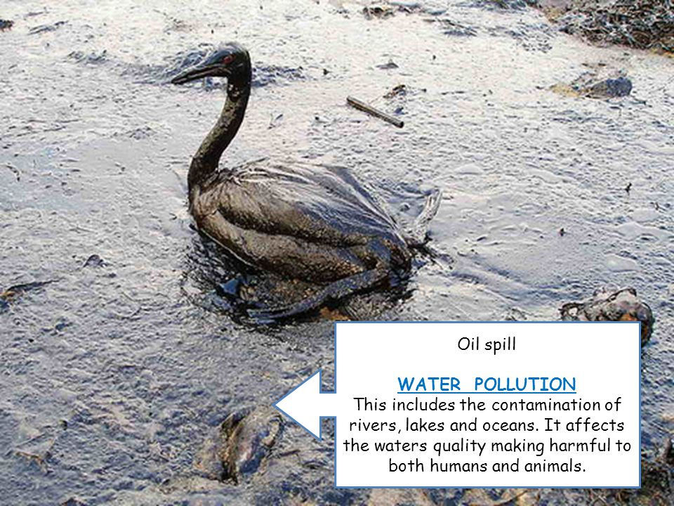 Oil spill WATER POLLUTION This includes the contamination of rivers, lakes and oceans.
