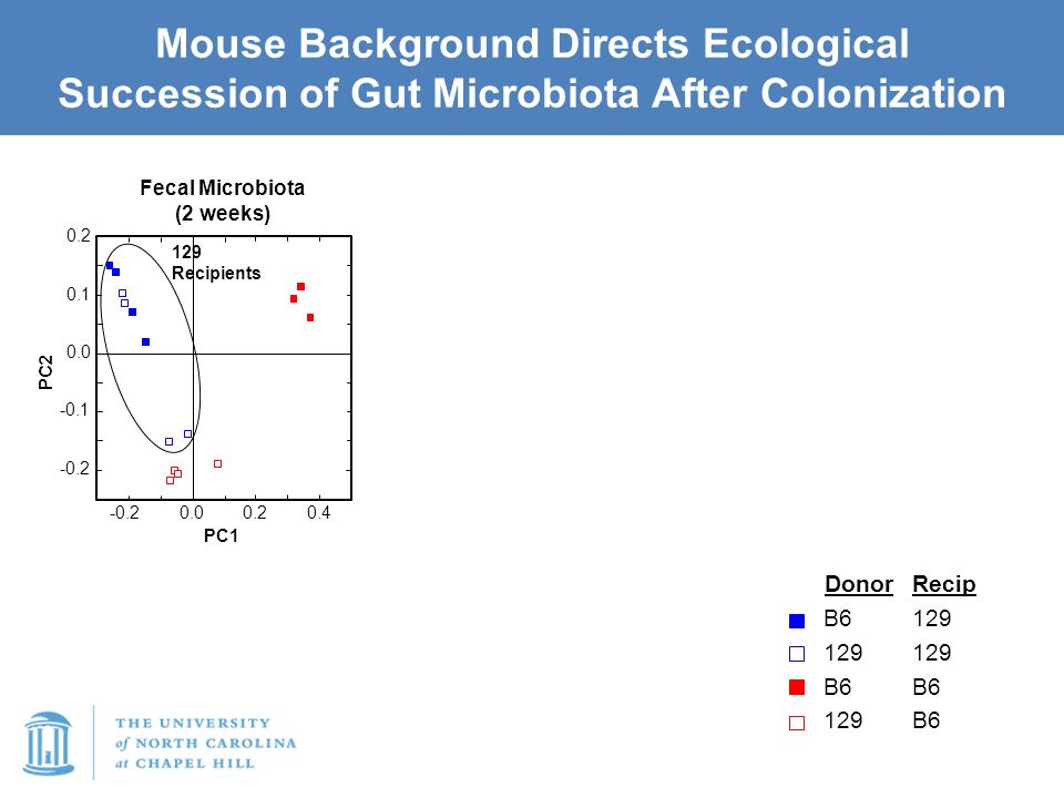 Mouse Background Directs Ecological Succession of Gut Microbiota After Colonization -0.2 -0.1 0.0 0.1 0.2 0.00.20.4 -0.2 PC2 PC1 Donor B6 129 B6 129 R