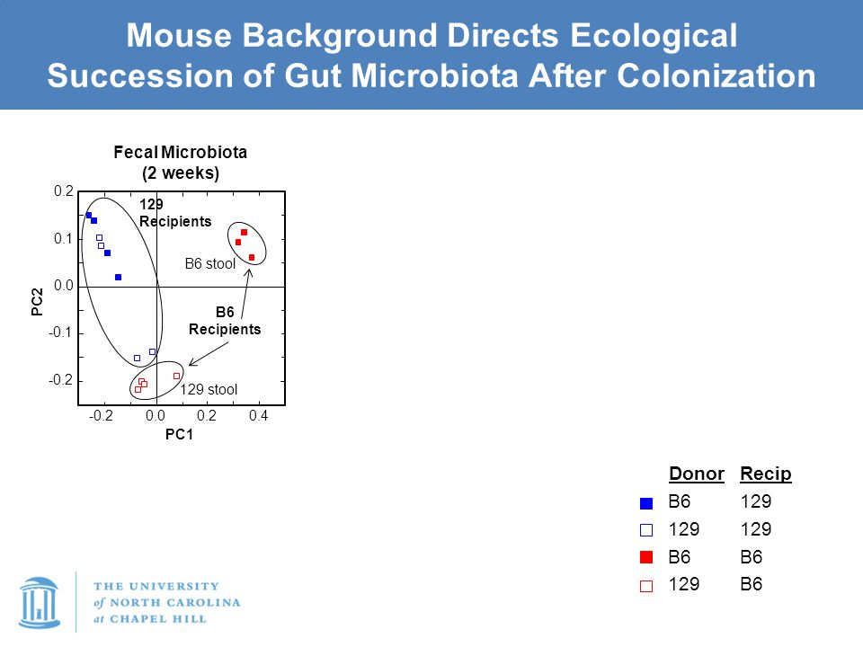 Mouse Background Directs Ecological Succession of Gut Microbiota After Colonization -0.2 -0.1 0.0 0.1 0.2 0.00.20.4 -0.2 PC2 PC1 Fecal Microbiota (2 weeks) Donor B6 129 B6 129 Recip 129 B6 129 Recipients B6 Recipients 129 stool B6 stool