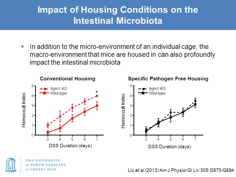  In addition to the micro-environment of an individual cage, the macro-environment that mice are housed in can also profoundly impact the intestinal microbiota Impact of Housing Conditions on the Intestinal Microbiota Liu et al (2013) Am J Physiol GI Liv 305:G573-G584 Hemoccult Index DSS Duration (days) * Irgm1 KO Wild-type Conventional Housing Hemoccult Index DSS Duration (days) Specific Pathogen Free Housing Irgm1 KO Wild-type