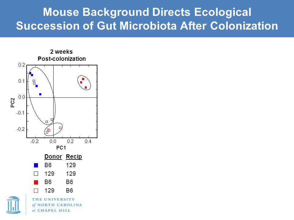 Mouse Background Directs Ecological Succession of Gut Microbiota After Colonization -0.2 -0.1 0.0 0.1 0.2 0.00.20.4 -0.2 PC2 PC1 2 weeks Post-colonization Donor B6 129 B6 129 Recip 129 B6