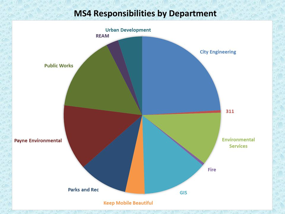 MS4 Responsibilities by Department