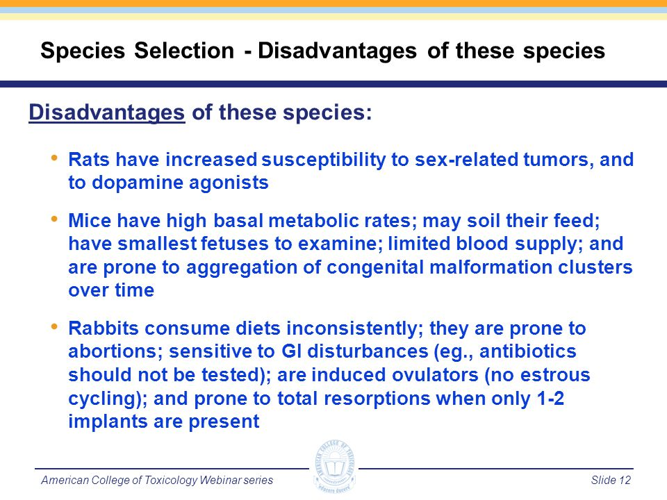 Slide 13American College of Toxicology Webinar series Using the Minipig in DART Studies Advantages Purpose bred; used as non-rodent model Multiple offspring (5-6); Placenta similar to humans than rodents or rabbits Sensitive to known teratogens May be species already used in general tox program Disadvantages Uses more test article; different housing requirements Spontaneous ovulators; IV dosing difficult; gavage requires restraint Sexually mature @ 5 months; C-section GD 108-110 Limited Historical control data; few labs using the minipig for DART work