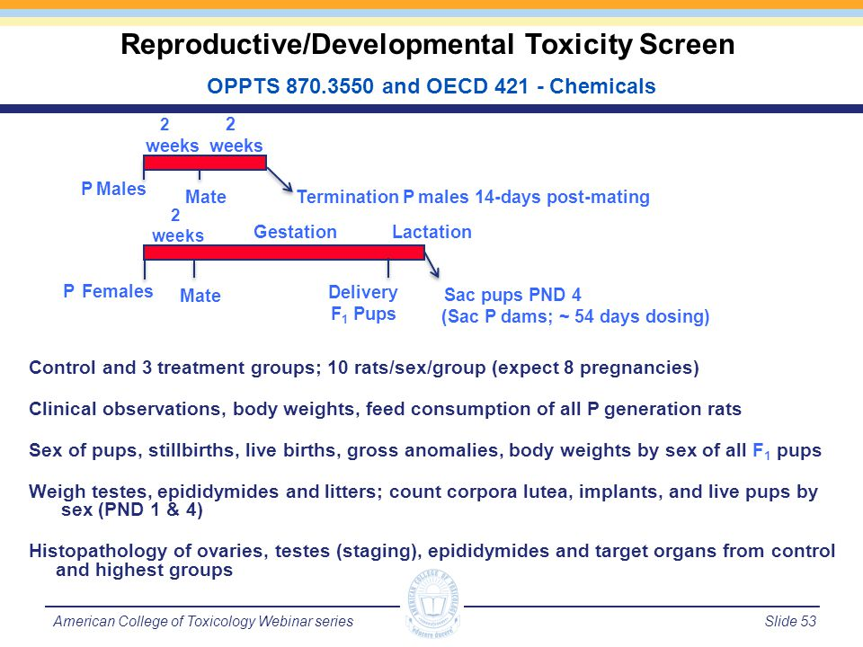 Slide 54American College of Toxicology Webinar series Endpoints Collected in Reproductive Toxicity Study Bold blue endpoints may be assessed in humans