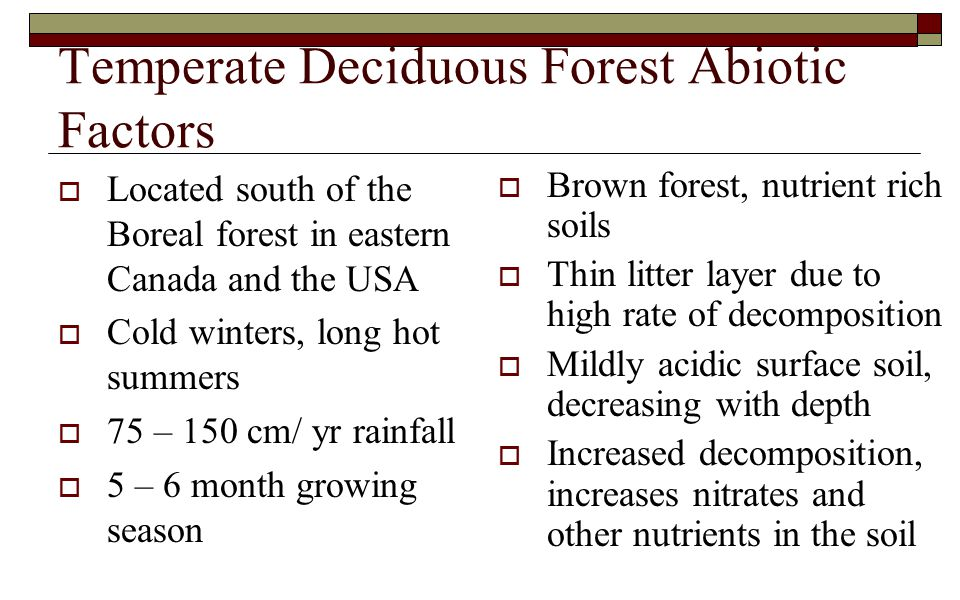 Temperate Deciduous Forest Abiotic Factors  Located south of the Boreal forest in eastern Canada and the USA  Cold winters, long hot summers  75 – 150 cm/ yr rainfall  5 – 6 month growing season  Brown forest, nutrient rich soils  Thin litter layer due to high rate of decomposition  Mildly acidic surface soil, decreasing with depth  Increased decomposition, increases nitrates and other nutrients in the soil