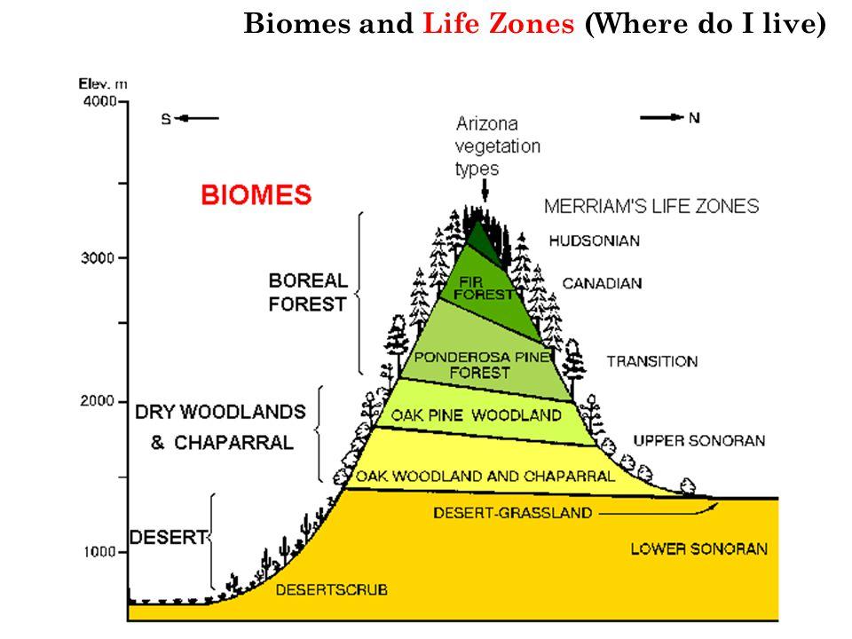 Biomes and Life Zones (Where do I live)