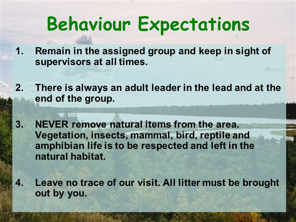 Behaviour Expectations 1.Remain in the assigned group and keep in sight of supervisors at all times.