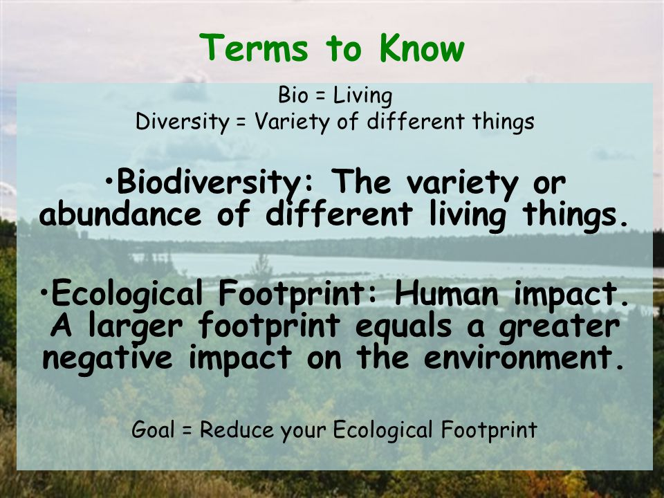 Terms to Know Bio = Living Diversity = Variety of different things Biodiversity: The variety or abundance of different living things.