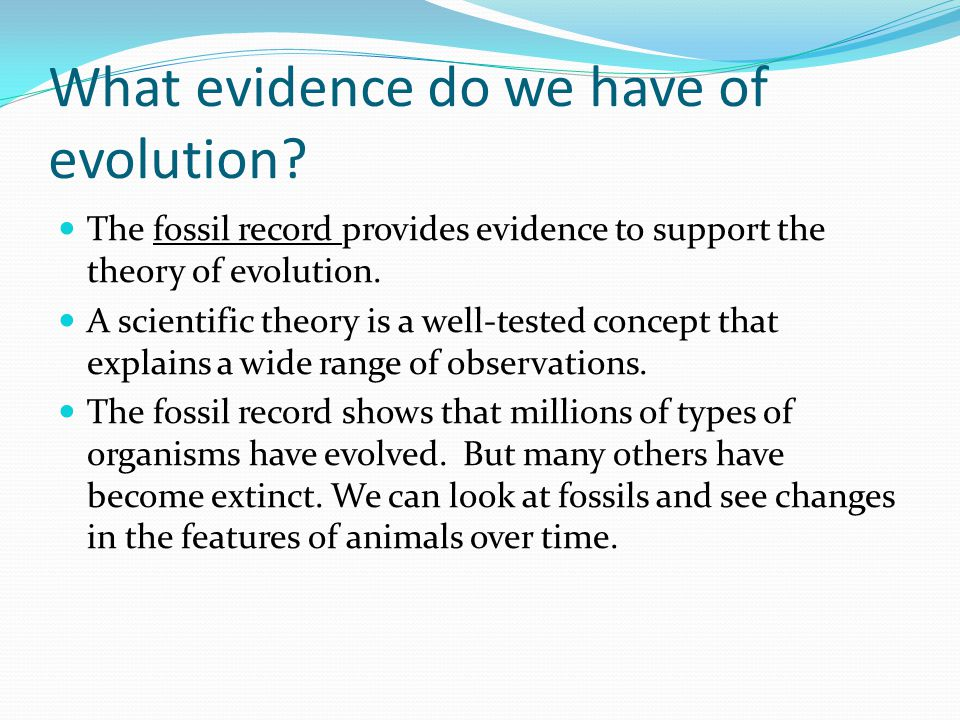 What evidence do we have of evolution? The fossil record provides evidence to support the theory of evolution. A scientific theory is a well-tested co