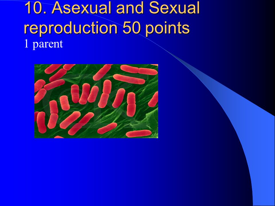 10. Asexual and Sexual reproduction 50 points 1 parent