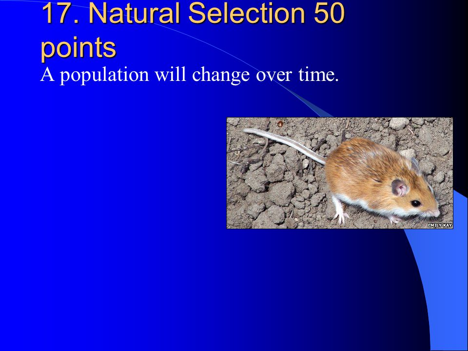 17. Natural Selection 50 points A population will change over time.