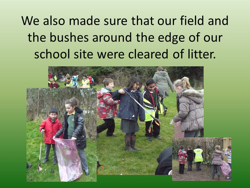 We also made sure that our field and the bushes around the edge of our school site were cleared of litter.