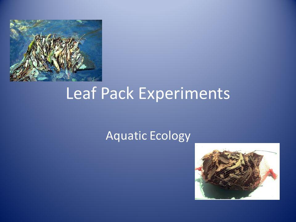 Leaf Pack Experiments Aquatic Ecology
