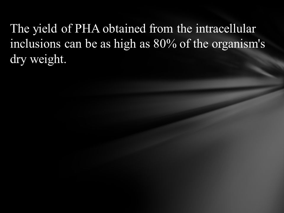 The yield of PHA obtained from the intracellular inclusions can be as high as 80% of the organism's dry weight.