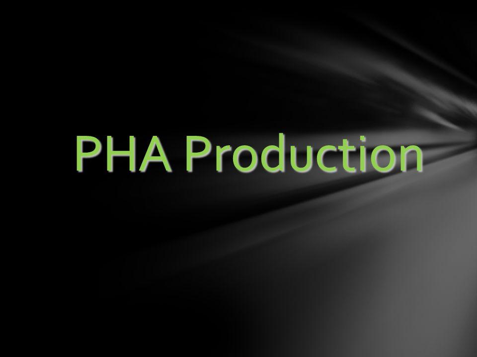 PHA Production