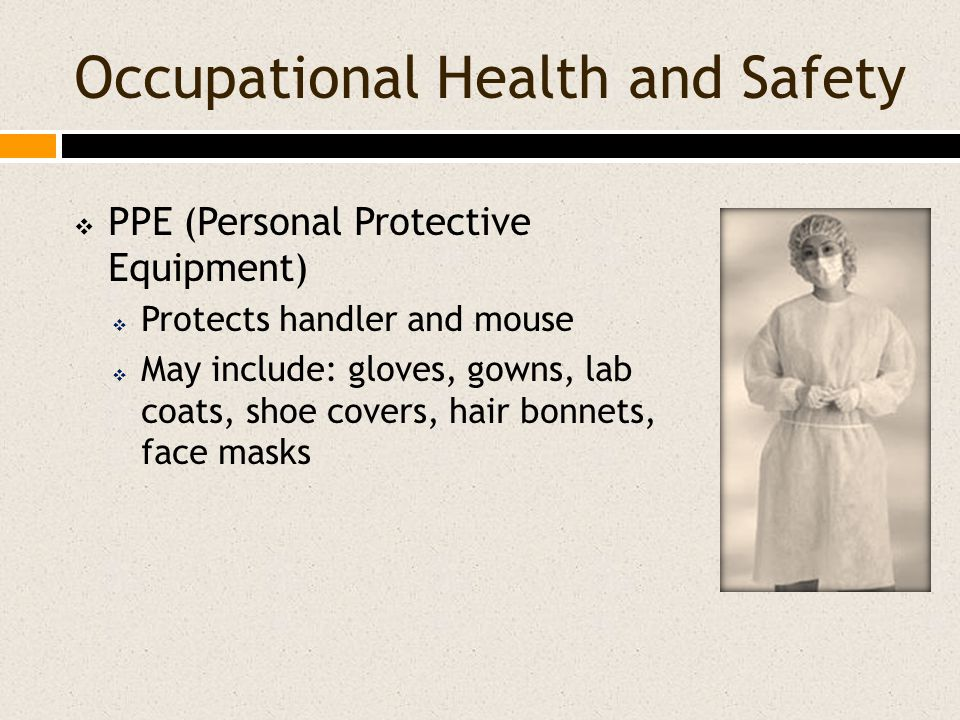 Occupational Health and Safety  PPE (Personal Protective Equipment)  Protects handler and mouse  May include: gloves, gowns, lab coats, shoe covers, hair bonnets, face masks