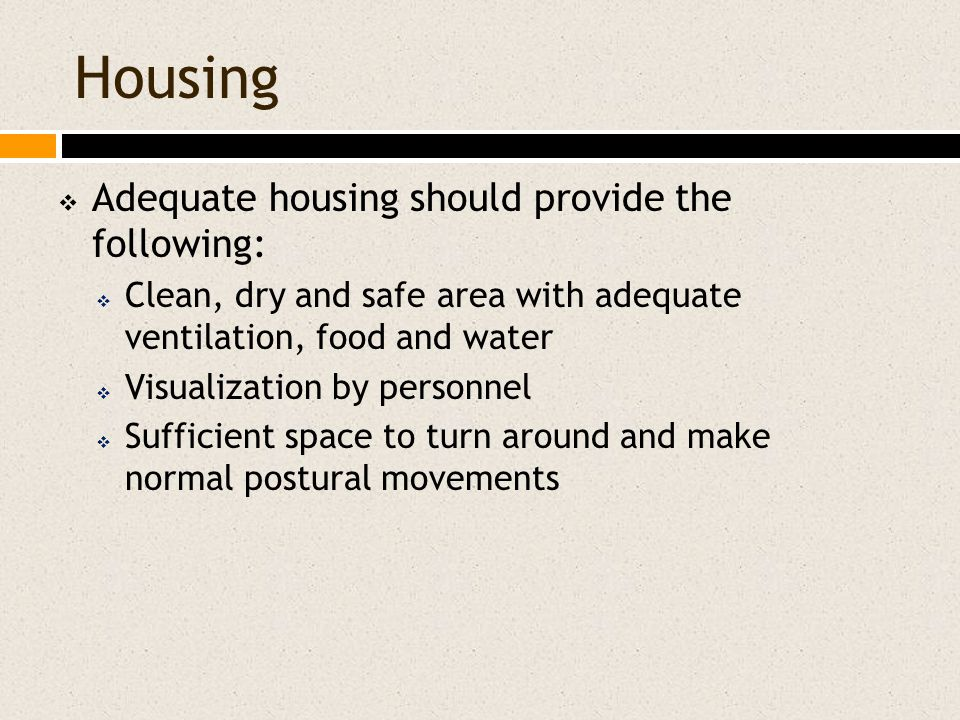 Housing  Adequate housing should provide the following:  Clean, dry and safe area with adequate ventilation, food and water  Visualization by personnel  Sufficient space to turn around and make normal postural movements