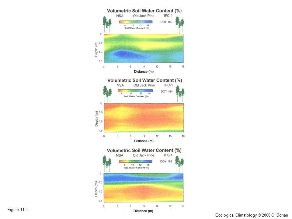 Figure 11.5 Ecological Climatology © 2008 G. Bonan