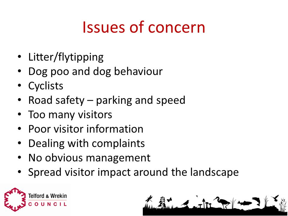 Issues of concern Litter/flytipping Dog poo and dog behaviour Cyclists Road safety – parking and speed Too many visitors Poor visitor information Deal
