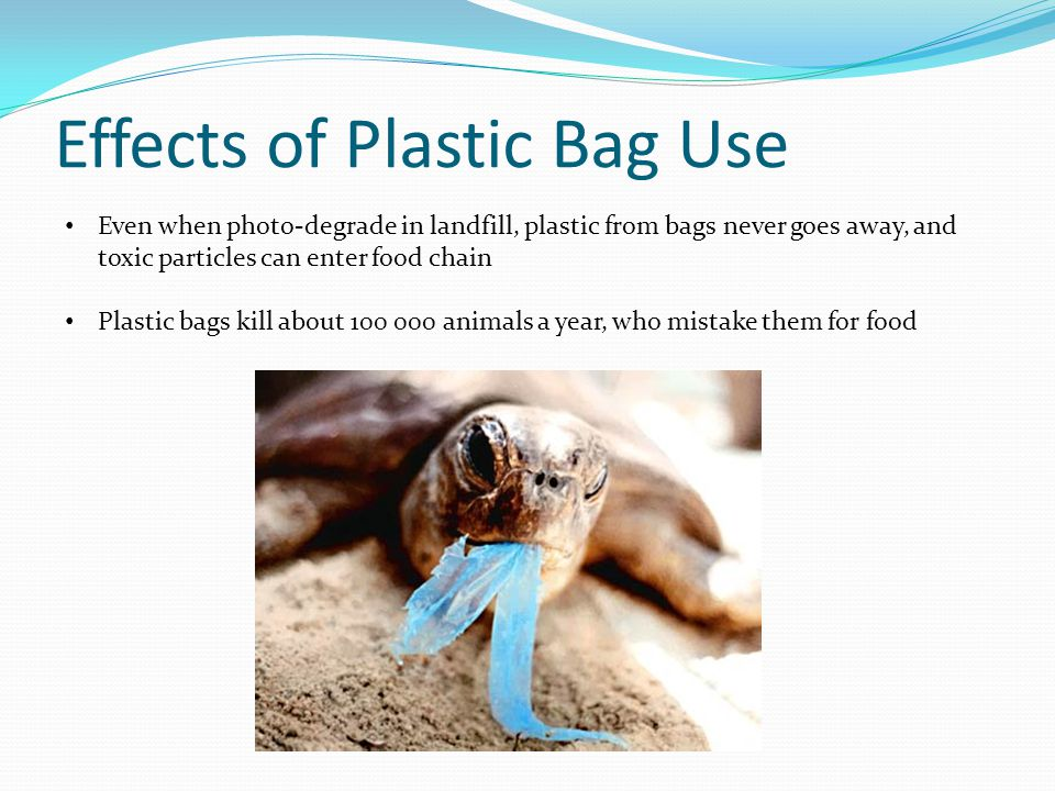 Effects of Plastic Bag Use Even when photo-degrade in landfill, plastic from bags never goes away, and toxic particles can enter food chain Plastic bags kill about 100 000 animals a year, who mistake them for food