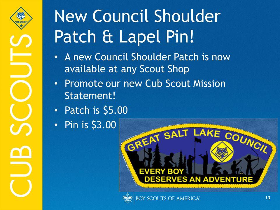 13 New Council Shoulder Patch & Lapel Pin.