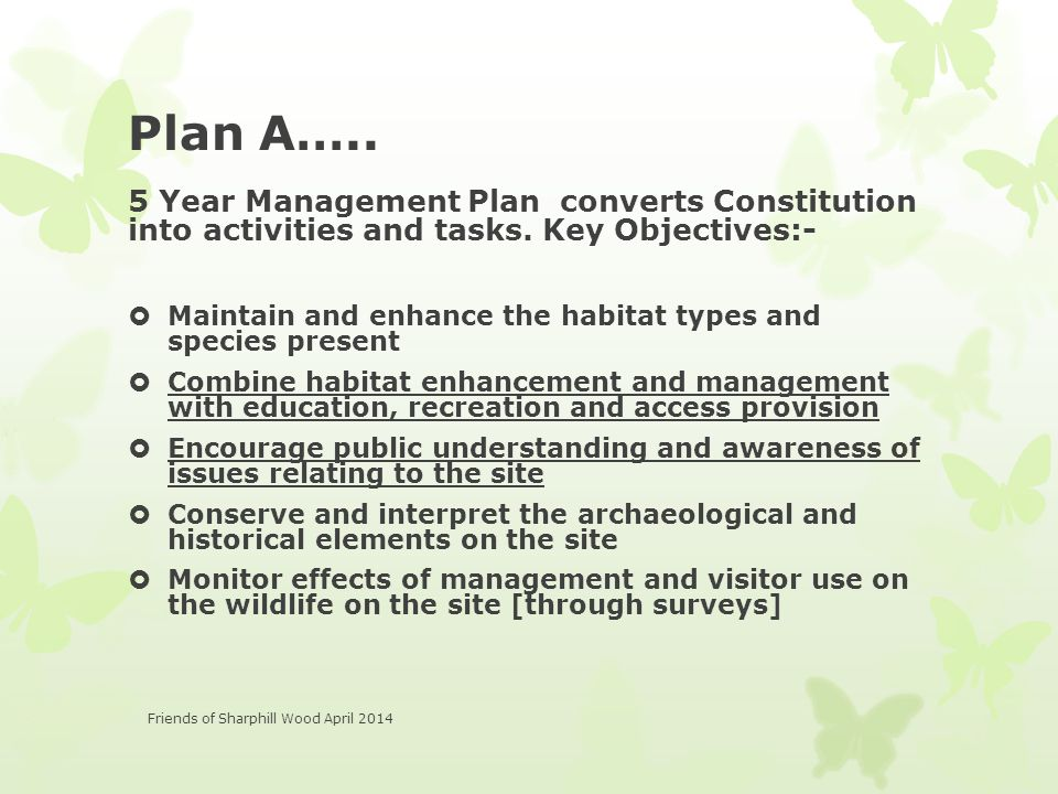 Plan A….. 5 Year Management Plan converts Constitution into activities and tasks.