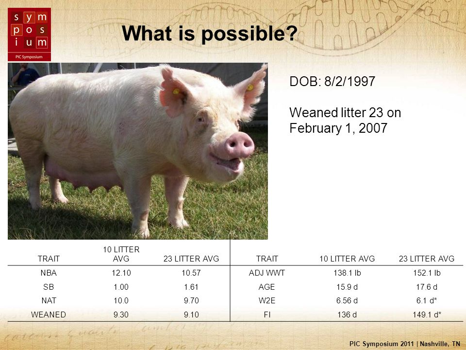 PIC Symposium 2011 | Nashville, TN What is possible.