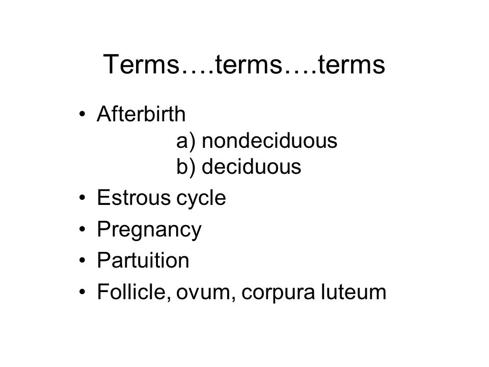 Terms….terms….terms Afterbirth a) nondeciduous b) deciduous Estrous cycle Pregnancy Partuition Follicle, ovum, corpura luteum
