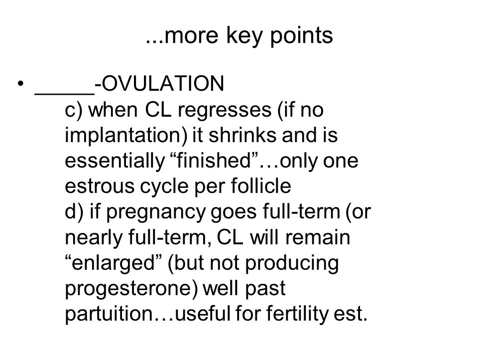 ...more key points _____-OVULATION c) when CL regresses (if no implantation) it shrinks and is essentially finished …only one estrous cycle per follicle d) if pregnancy goes full-term (or nearly full-term, CL will remain enlarged (but not producing progesterone) well past partuition…useful for fertility est.