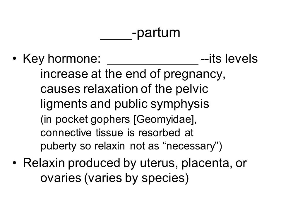 ____-partum Key hormone: _____________ --its levels increase at the end of pregnancy, causes relaxation of the pelvic ligments and public symphysis (in pocket gophers [Geomyidae], connective tissue is resorbed at puberty so relaxin not as necessary ) Relaxin produced by uterus, placenta, or ovaries (varies by species)