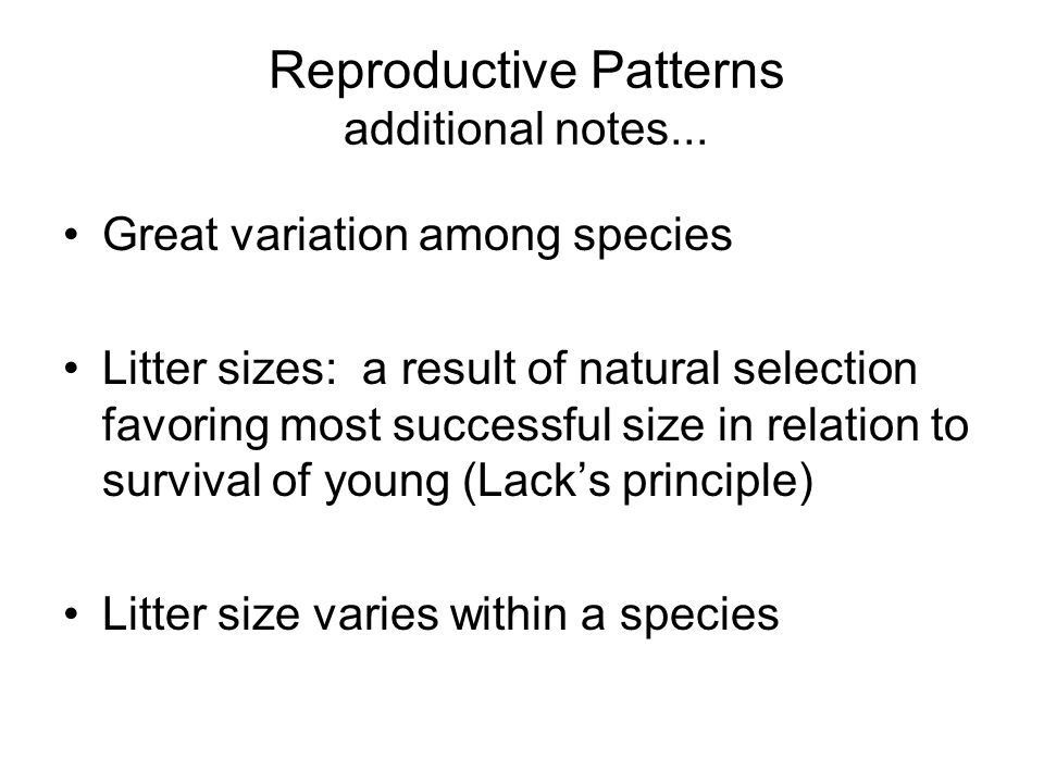 Reproductive Patterns additional notes...