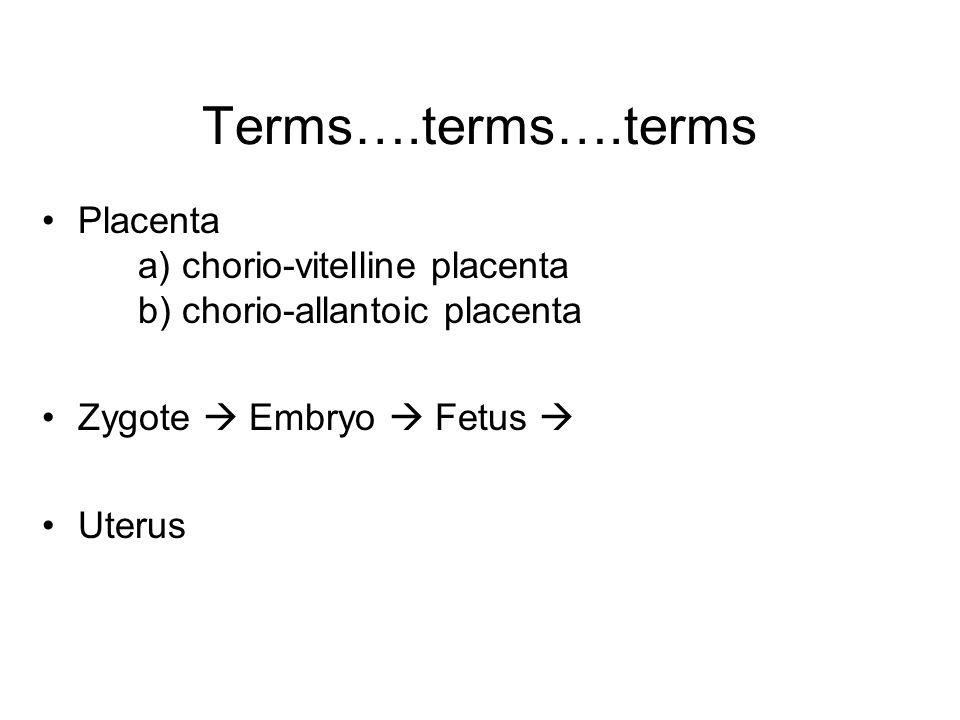 Terms….terms….terms Placenta a) chorio-vitelline placenta b) chorio-allantoic placenta Zygote  Embryo  Fetus  Uterus