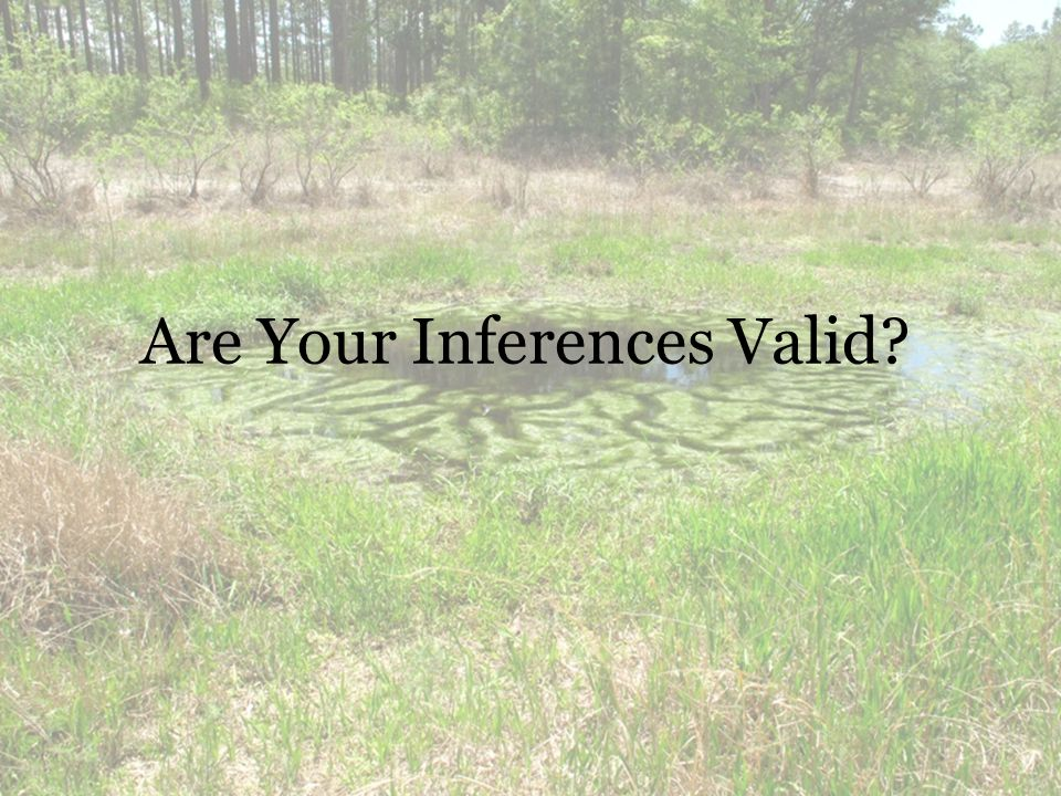 Are Your Inferences Valid