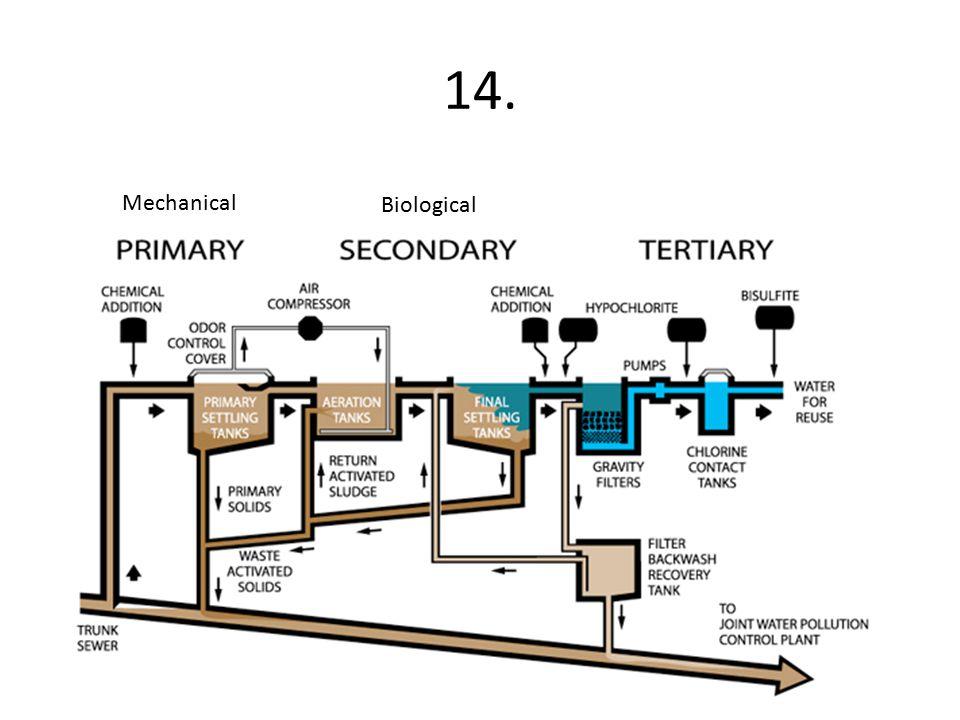14. Biological Mechanical